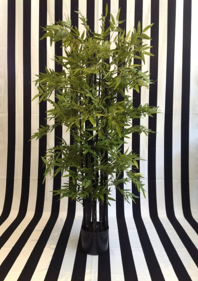 4ft Black Stem Bamboo Tree